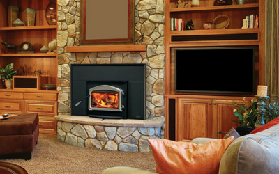 Wood and gas fireplace inserts