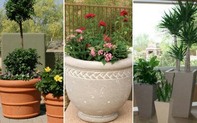 Outdoor concrete planters