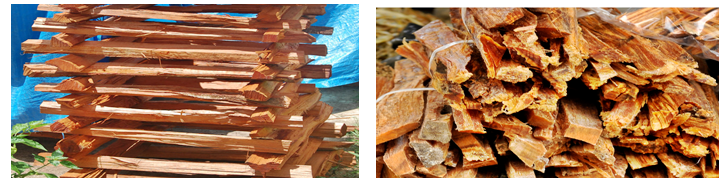 Fatwood reference image showing two types of resin age.