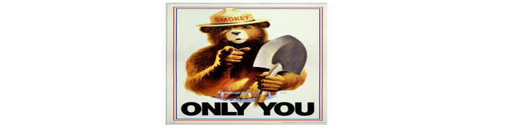 Smokey the Bear reference image to safe outdoor wood burning fires.