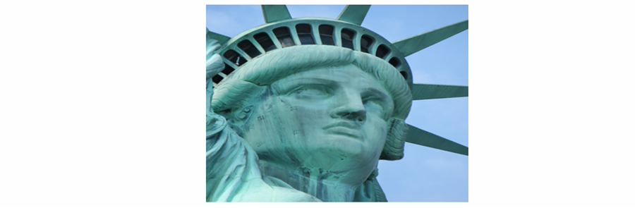 A reference image showing the staining of the Statue of Liberty