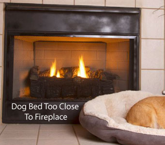 Keep all pet bedding and toys away from your fireplace