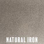 Natural Iron powder coat finish for fireplace doors