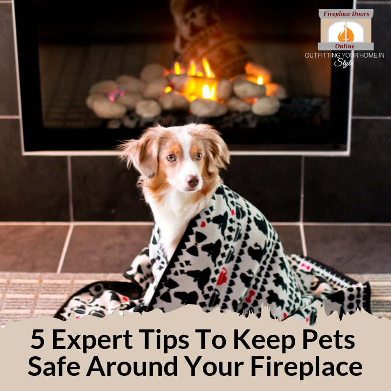 5 Expert Tips to keep your pets safe around the fireplace