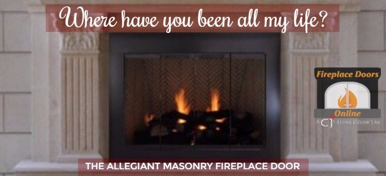 Allegiant Masonry Fireplace Door