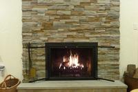 Carson Masonry Fireplace Door