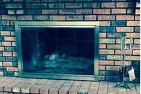 Shiloh Masonry Fireplace Door