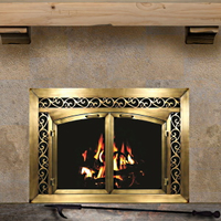 Electro Plated Fireplace Doors