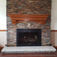 Sentry Premiere Track Masonry Fireplace Door