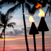 Black Cone Automated Tiki Torch