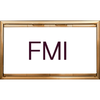 FMI Fireplace Doors