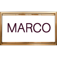 Marco Fireplace Door