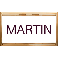 Martin Fireplace Door