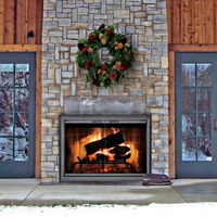 Outdoor Masonry Fireplace Doors