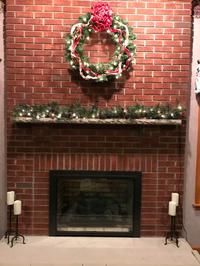 Sion Masonry Fireplace Door