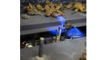 iSeries IPI Ignition Close-Up