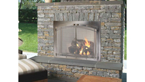 Stainless Steel Arch Conversion Fireplace Door With Window Pane