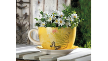 Garden Butterfly Teacup Planter (L) 2
