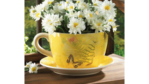 Garden Butterfly Teacup Planter 2
