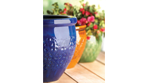 Jewel-Tone Flower Pot Trio 3