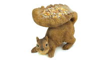 Woodland Squirrel Birdfeeder 1