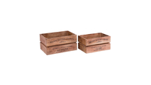 Oysters and Clams Boxes Set of 2