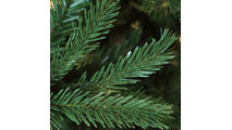 "2-7.5""H Full 55""W Balsam Fir Prelit Tree Warm White LED 750"