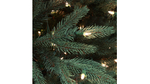 "2-6.5""H Full 54""W Noble Fir Prelit Tree Warm White LED 600"