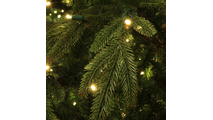 "2-12""H Full 72""W Fraser Fir Prelit Christmas Tree Warm White LED 2,000"
