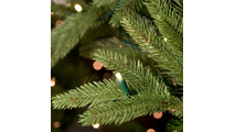 "3--6.5""H Full 54""W Noble Fir Prelit Tree Warm White LED 600"