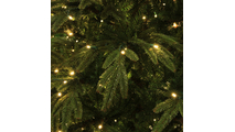 "3-12""H Full 72""W Fraser Fir Prelit Christmas Tree Warm White LED 2,000"