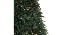 "4-6.5""H Full 54""W Carolina Fir Prelit Tree Warm White LED 700"