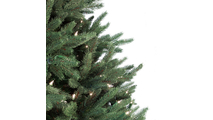 "4-6.5""H Full 54""W Noble Fir Prelit Tree Warm White LED 600"