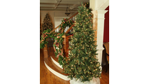 "5-7.5""H Full 55""W Balsam Fir Prelit Tree Warm White LED 750"