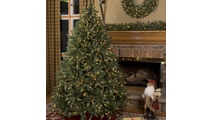"5-4.5""H Full 45""W Douglas Fir Prelit Tree Clear 200"