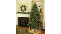 "5-6.5""H Full 54""W Noble Fir Prelit Tree Warm White LED 600"