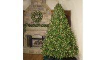 "5-7.5""H Slender 48""W Winchester Fir Prelit Tree Warm White LED 750"
