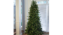 "7-7.5""H Full 55""W Balsam Fir Prelit Tree Warm White LED 750"