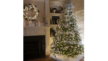 "7-6.5""H Full 54""W Noble Fir Prelit Tree Warm White LED 600"