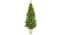 Olympia Prelit LED Potted Tree