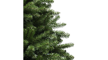 Residential Christmas Tree Douglas Fir Unlit Tree