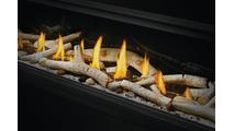 Birch & Flame Detail
