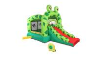 Frog Inflatable Castle