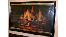 Mystique Fireplace Door