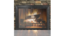 Savannah Fireplace Door in Textured Black