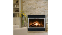 Shadow Zero Clearance Fireplace Door in Satin Nickel