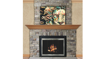 Shiloh Zero Clearance Fireplace Door in Champagne