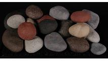 FireStones in Calico Mix 18 Inch