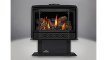 Havelock Direct Vent Gas Stove with Metallic Black Door