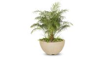 38 Inch Lucena Planter Bowl